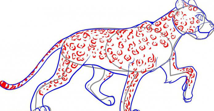как нарисовать леопарда карандашом
