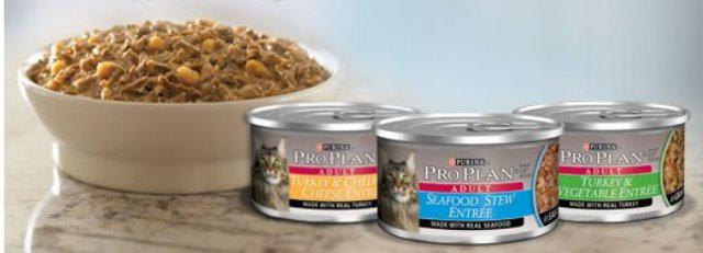 сухой корм проплан для кошек отзывы