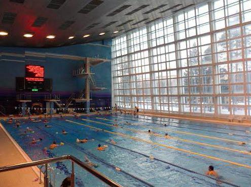 бассейн заря новосибирск