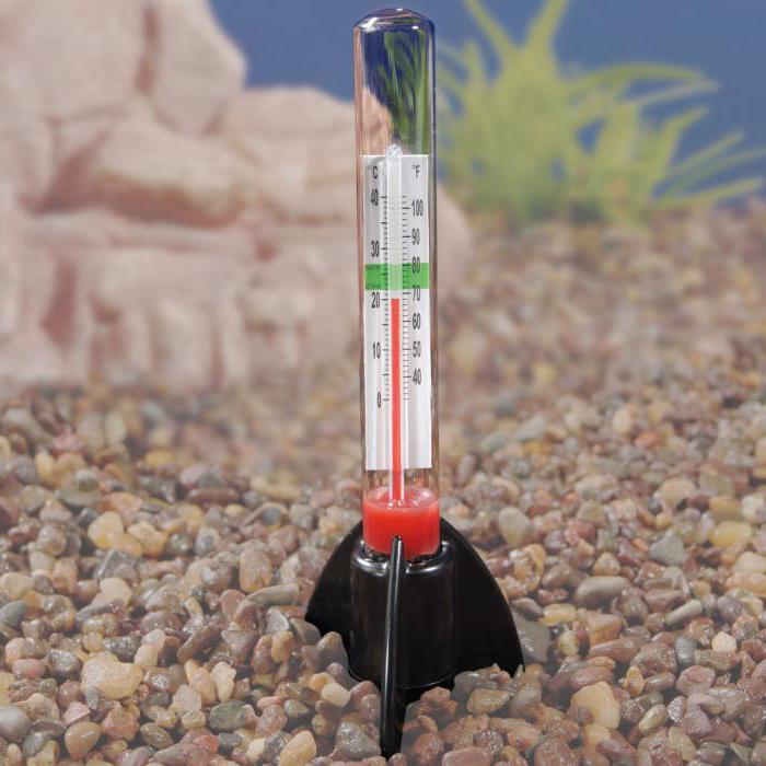 как охладить воду в аквариуме в жару