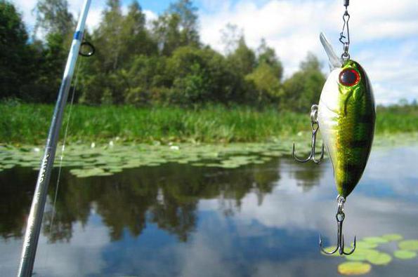 рыбалка в озере вялье