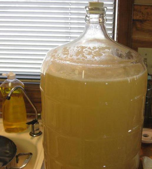 как сделать медовуху из забродившего меда
