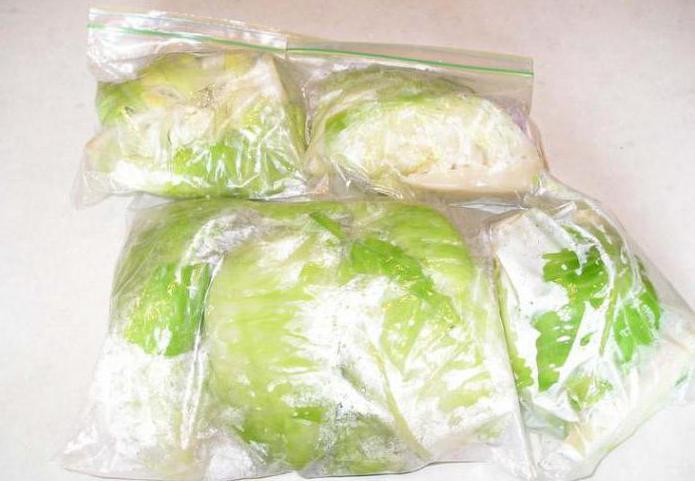 можно ли замораживать белокочанную капусту в морозилке