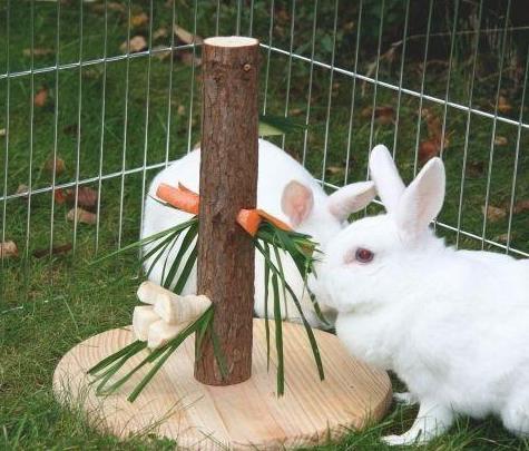 как сделать самодельные игрушки для кролика