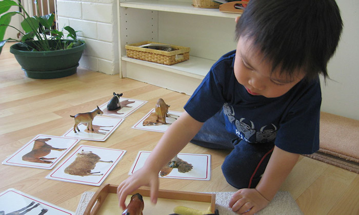 Montessori technique for children