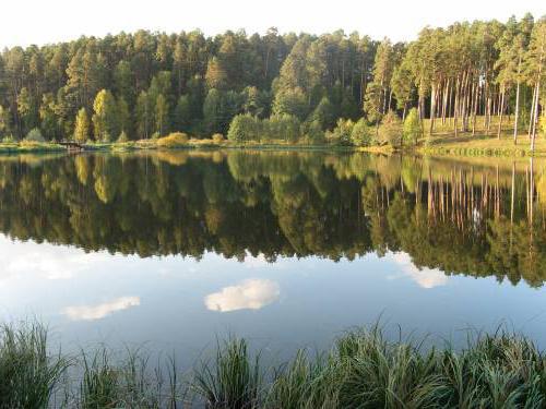 Белое озеро Ульяновская область