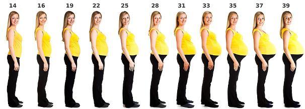 Беременности 1 семестр