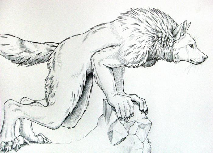 картинки как нарисовать оборотня карандашом этом