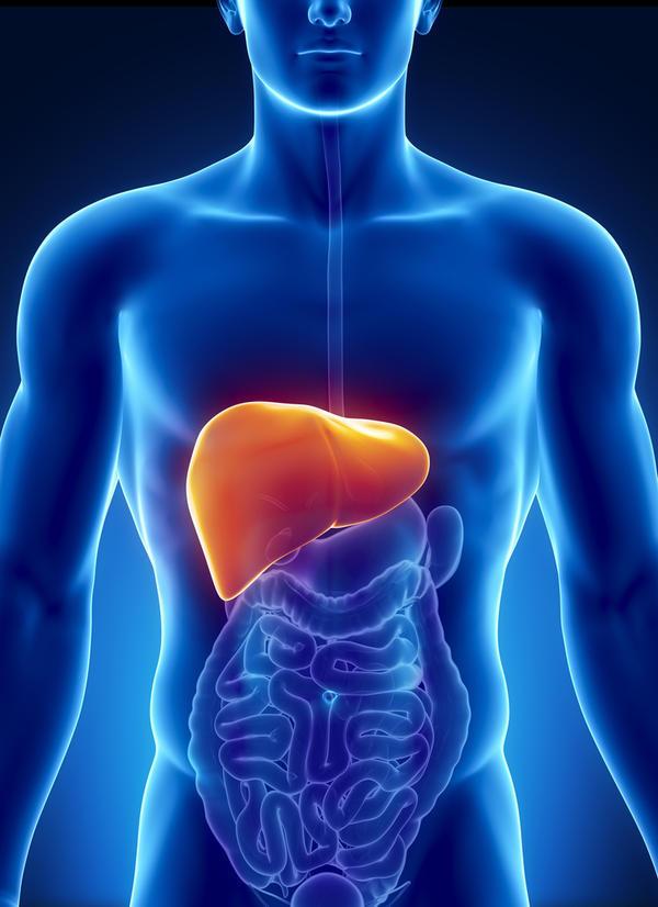 паразитарная киста печени симптомы
