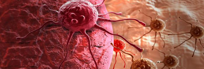анализ на онкомаркеры рэа