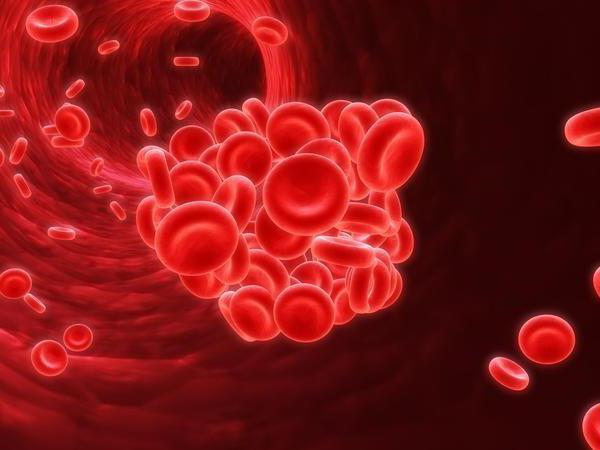 как обозначается холестерин в анализе крови
