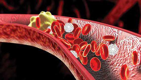 что такое холестерин в биохимическом анализе крови