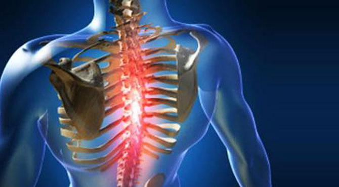Кифоз грудного отдела позвоночника видео упражнения