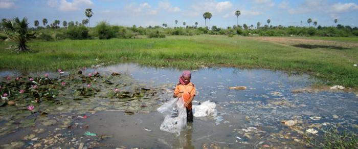 проблема загрязнения вод мирового океана кратко