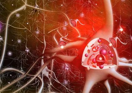 медиаторы синапса
