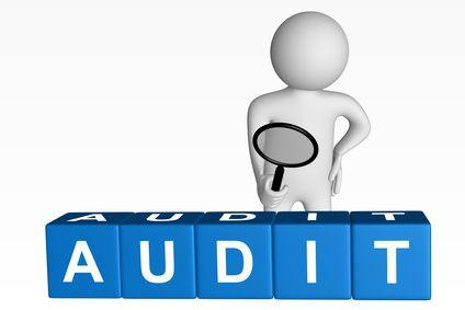 Аудиторский финансовый контроль. Аудиторская проверка предприятия