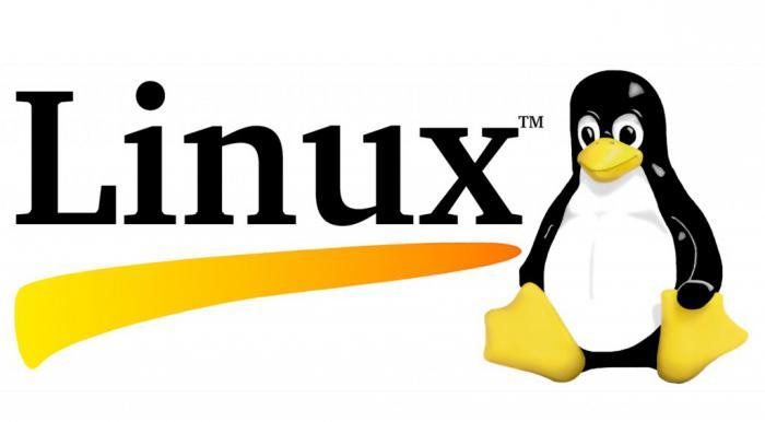Настройка Squid Ubuntu
