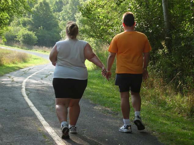 Все программы похудения гербалайф