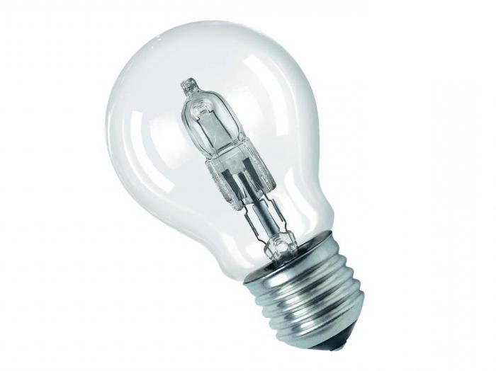 Разновидности лампочек