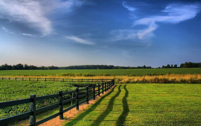 Акт административного обследования объекта земельных отношений