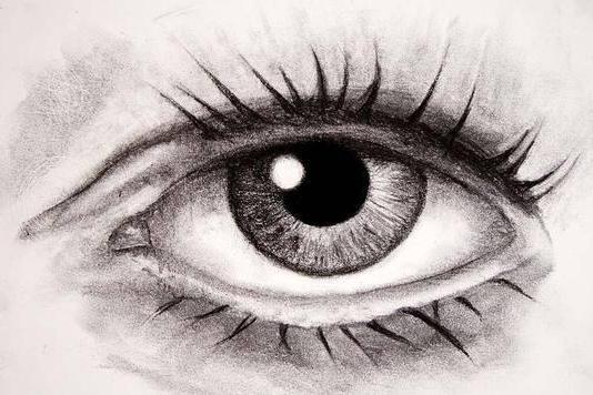вспомогательный аппарат глаза анатомия