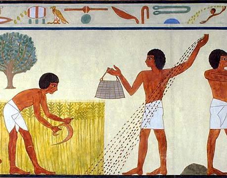 Картинки земледелия в древнем египте