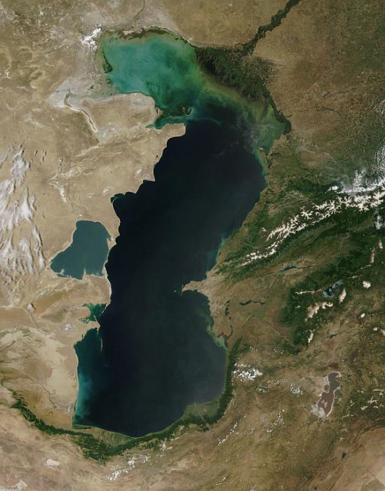 Каспийское море это озеро