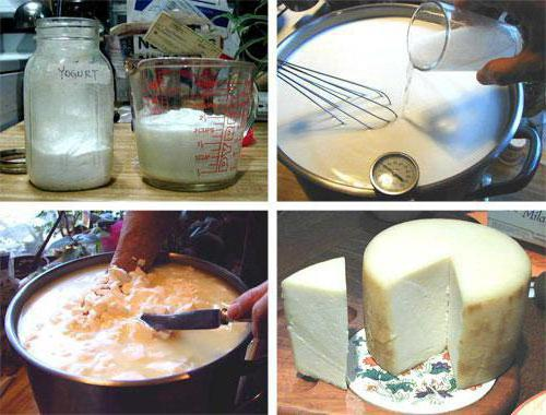 Как приготовить мягкие сыры в домашних условиях 90