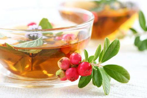 травяные чаи на каждый день рецепты