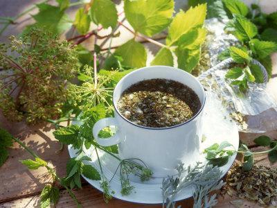Как сделать чай из мяты в домашних условиях