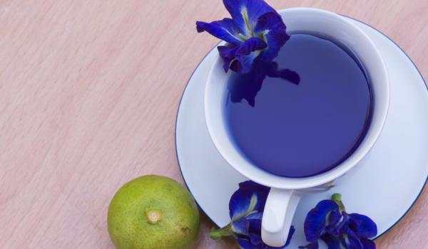 тайский голубой чай отзывы
