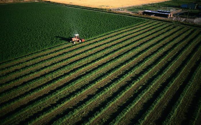 вид разрешенного использования земель сельскохозяйственного назначения