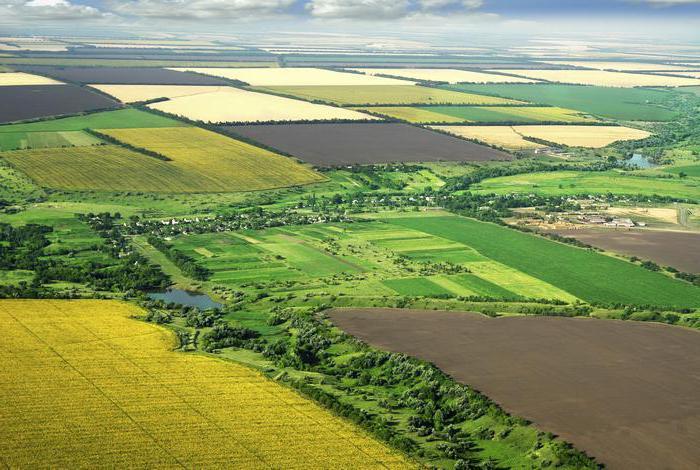 виды земель сельскохозяйственного назначения