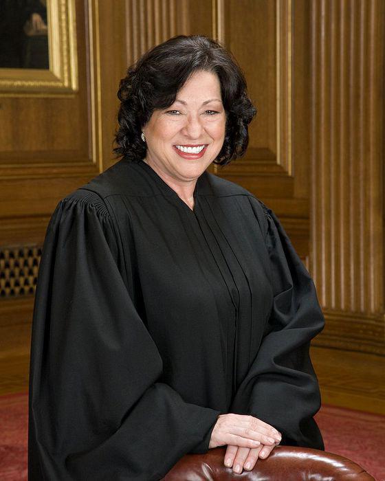звено судебной системы судебные инстанции