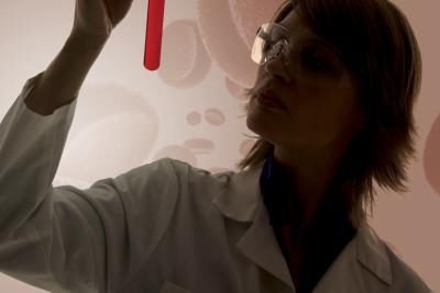 Электрофорез белков крови что показывает