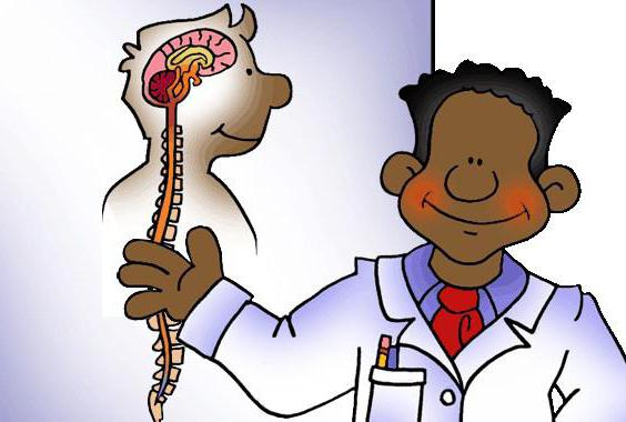 влияние на нервную систему
