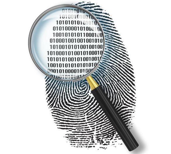 понятие и этапы квалификации преступлений