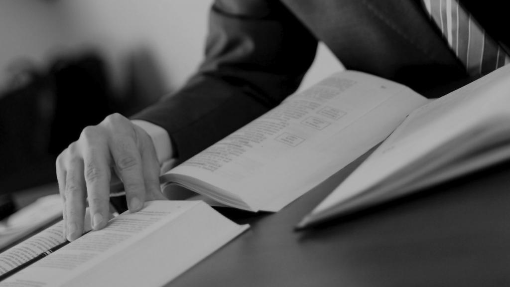 услуги юридическая заключения