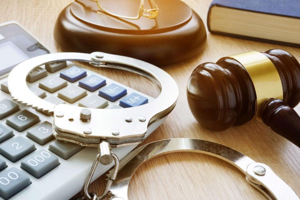 Лица, подлежащие уголовной ответственности. УК РФ Глава 4