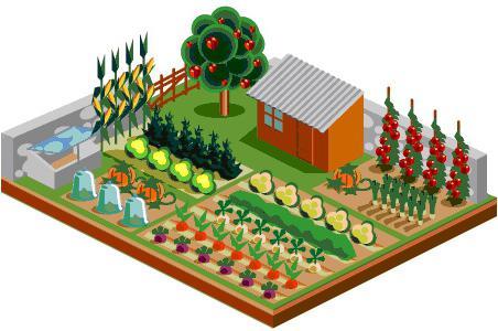 обустройство двора частного дома в деревне