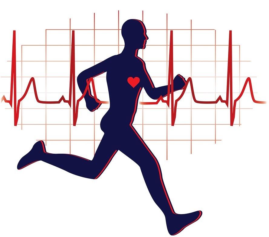 Почему после тренировок увеличивается вес? Возможные причины, особенности и отзывы