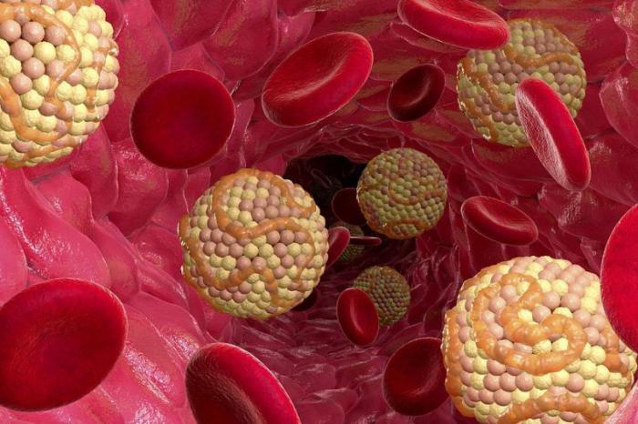 лечение холестерина народными средствами