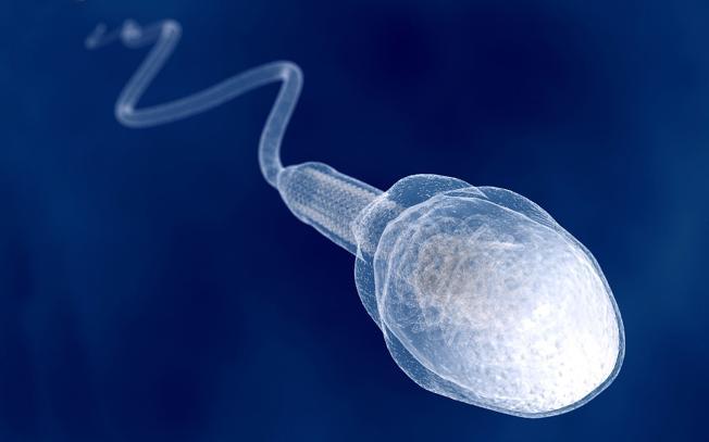 Во сколько лет поевляться сперма