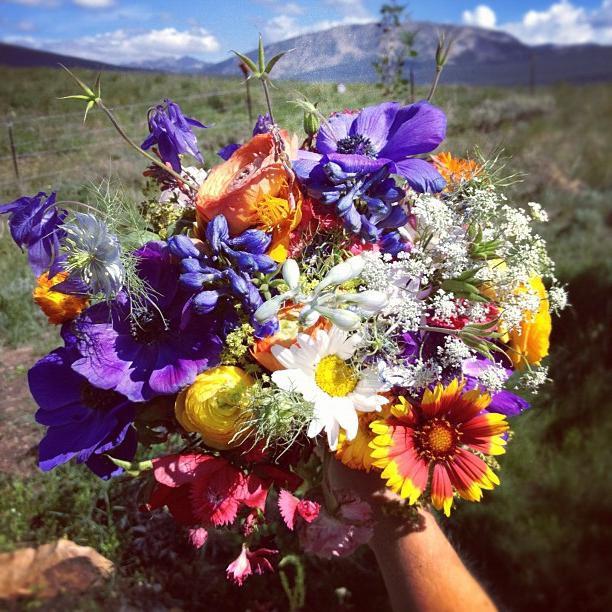 Девушки с цветами в руках: фото и картинки цветы в руках 29