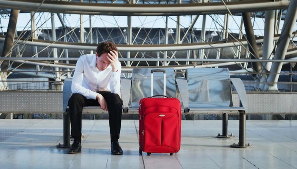 пассажир и чемодан