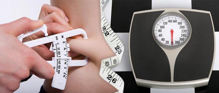 программа правильного питания для похудения