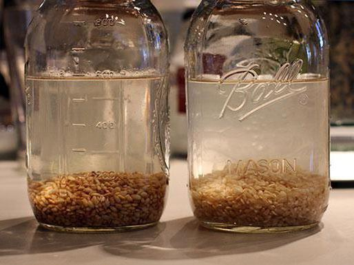 Рисовое молоко: польза, вред и способ приготовления