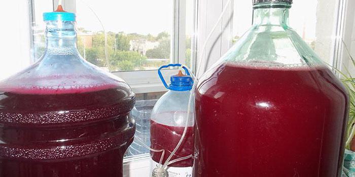 забродил компот как сделать вино
