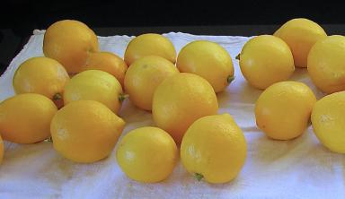 лимон с сахаром в банке рецепт