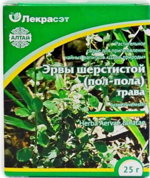 Эрва шерстистая трава применение